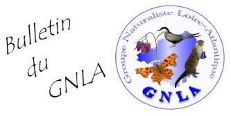 Bulletin GNLA
